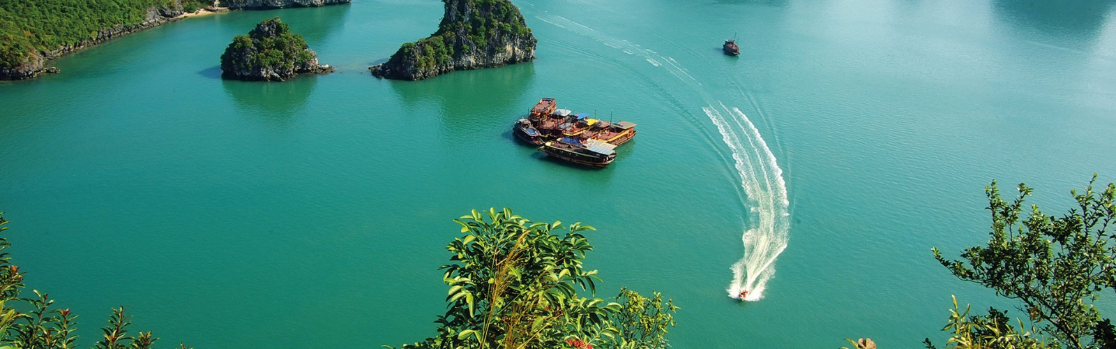 AU CO Cruises - Halong Bay in Focus tour