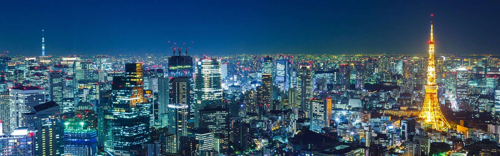 Tokyo Short Stay tour