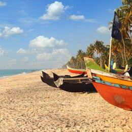 Kerala & The Southern Highlights Private Tour